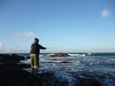 fishing-near-salcombe
