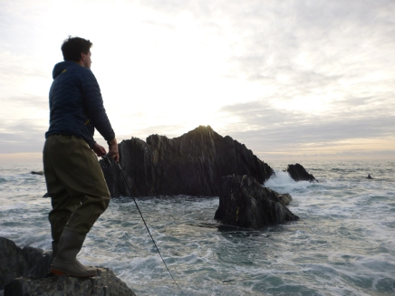 guided-tours-shore-fishing-devon