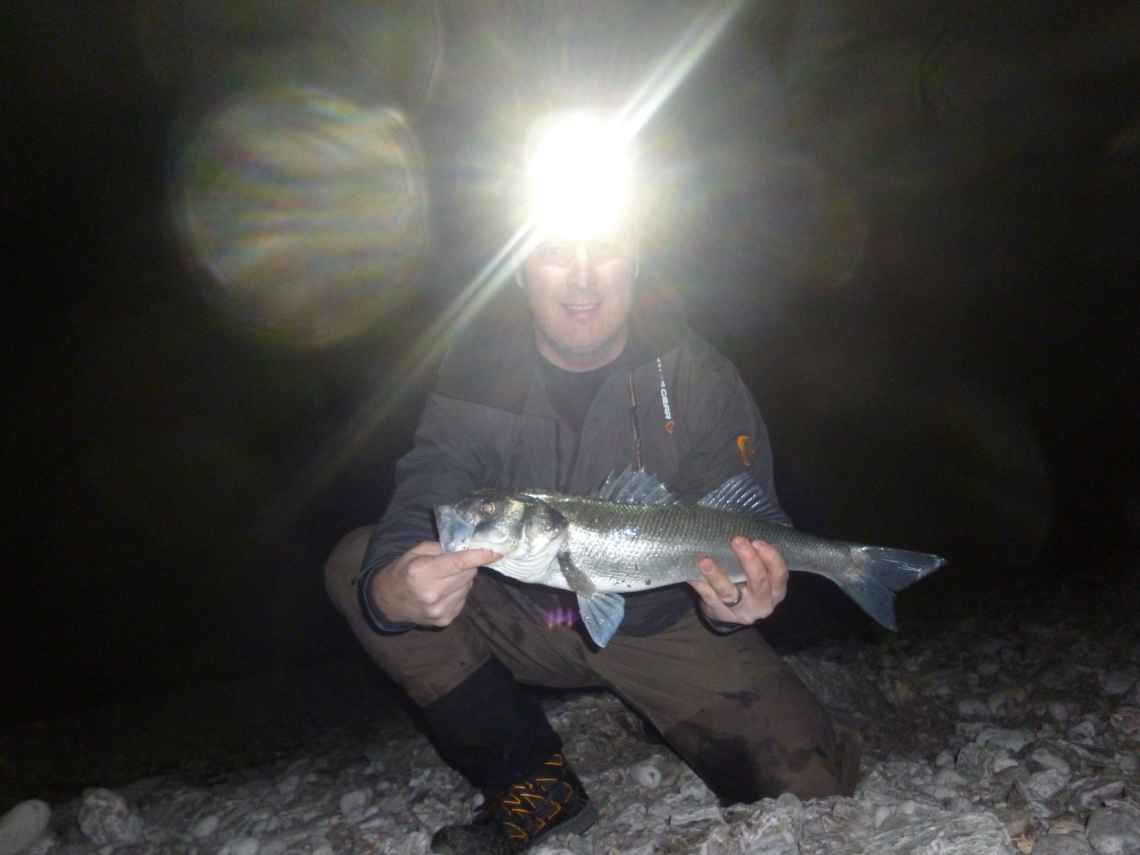 bass on lures at night
