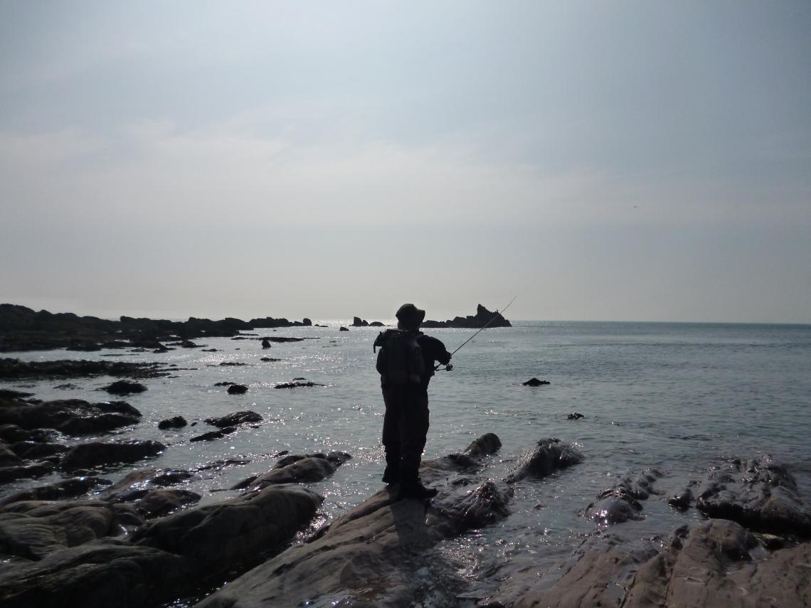 UK guided bass fishing