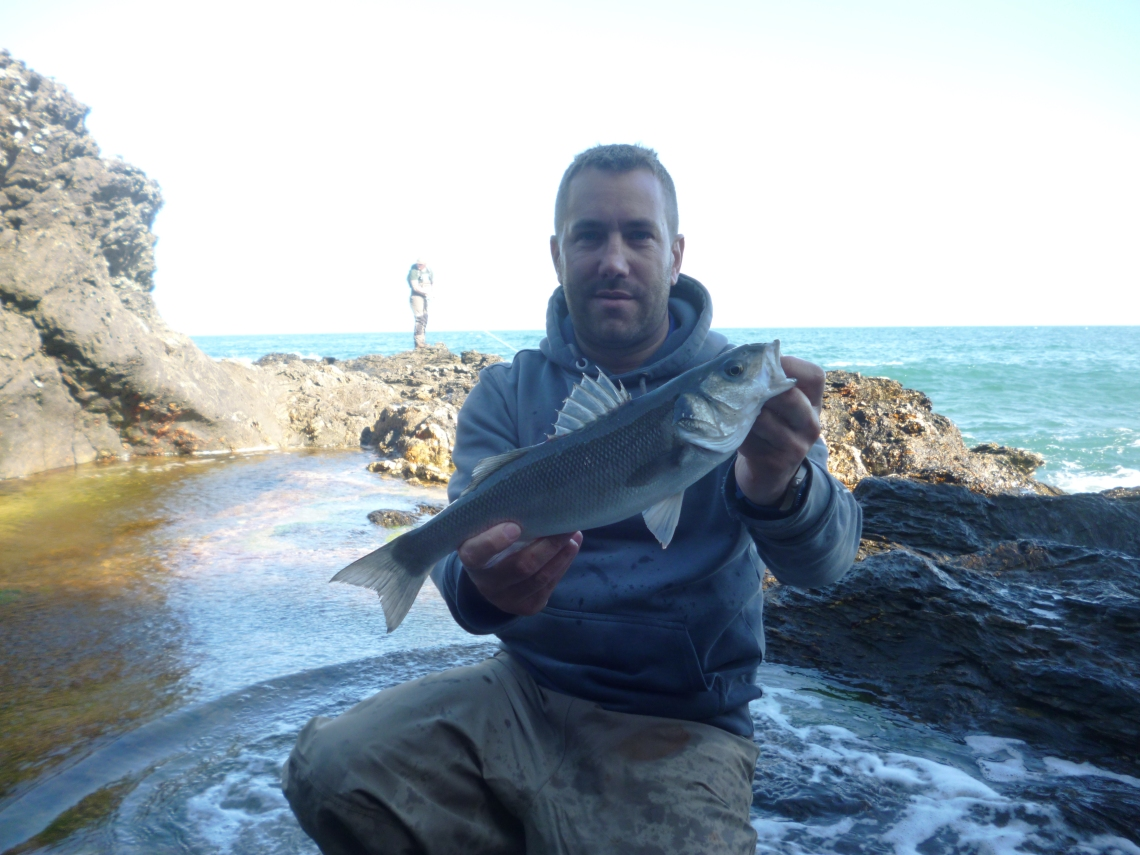 bass fishing near salcombe devon