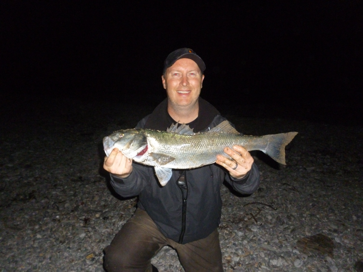 My recent catches darkness offering more consistency for Night bass fishing