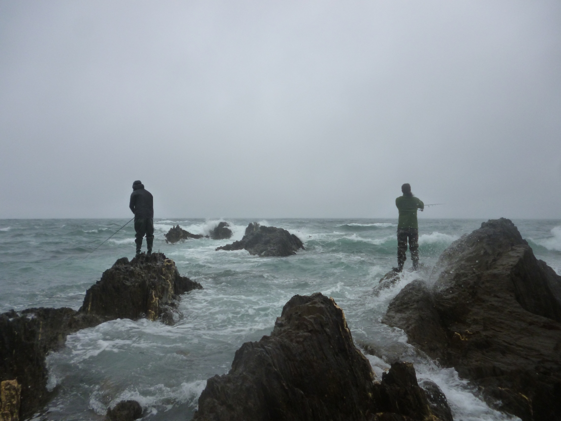 South Devon fishing