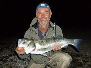 Senkos and bass fishing at night