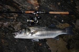 6lb bass caught at night