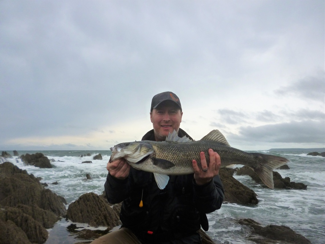 Bass guide south West England