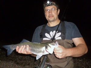 How to catch basss at night on lures