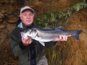 Lure fishing for bass in the UK