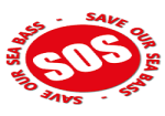 SOS Bass