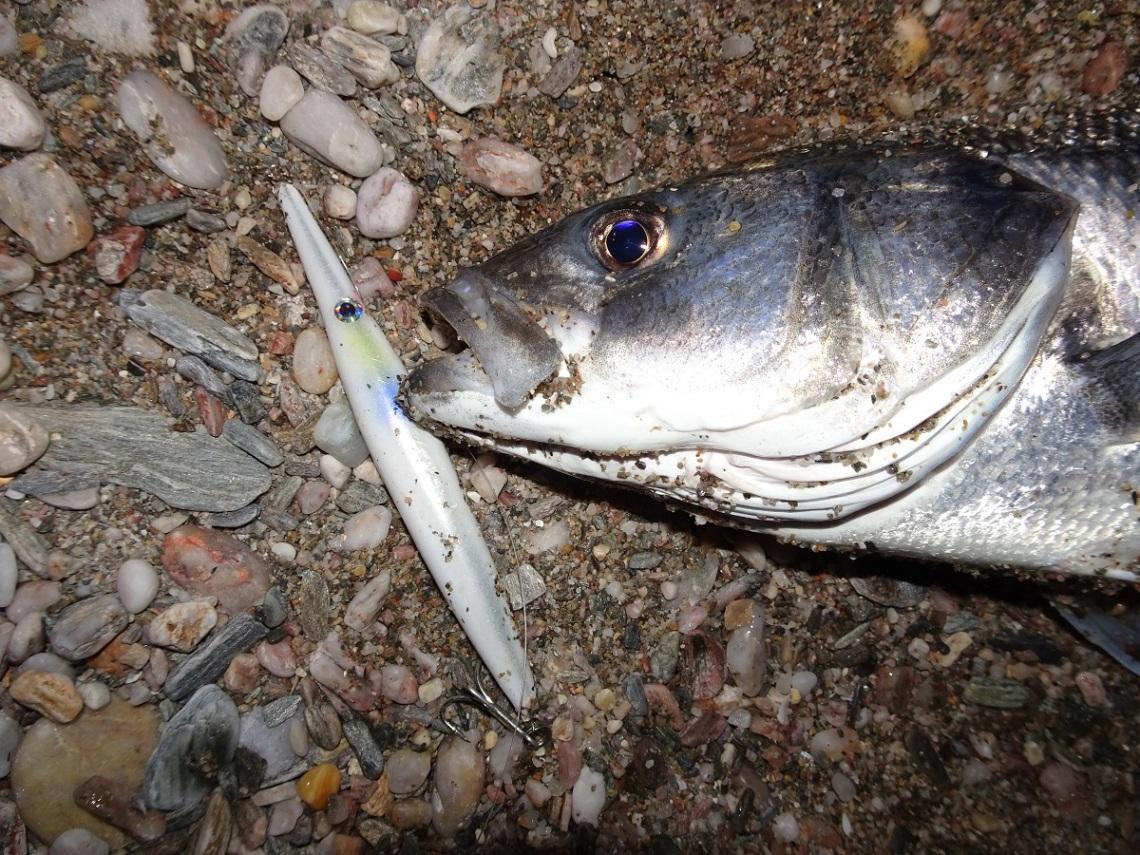 Jim's Lures Needlefish bass