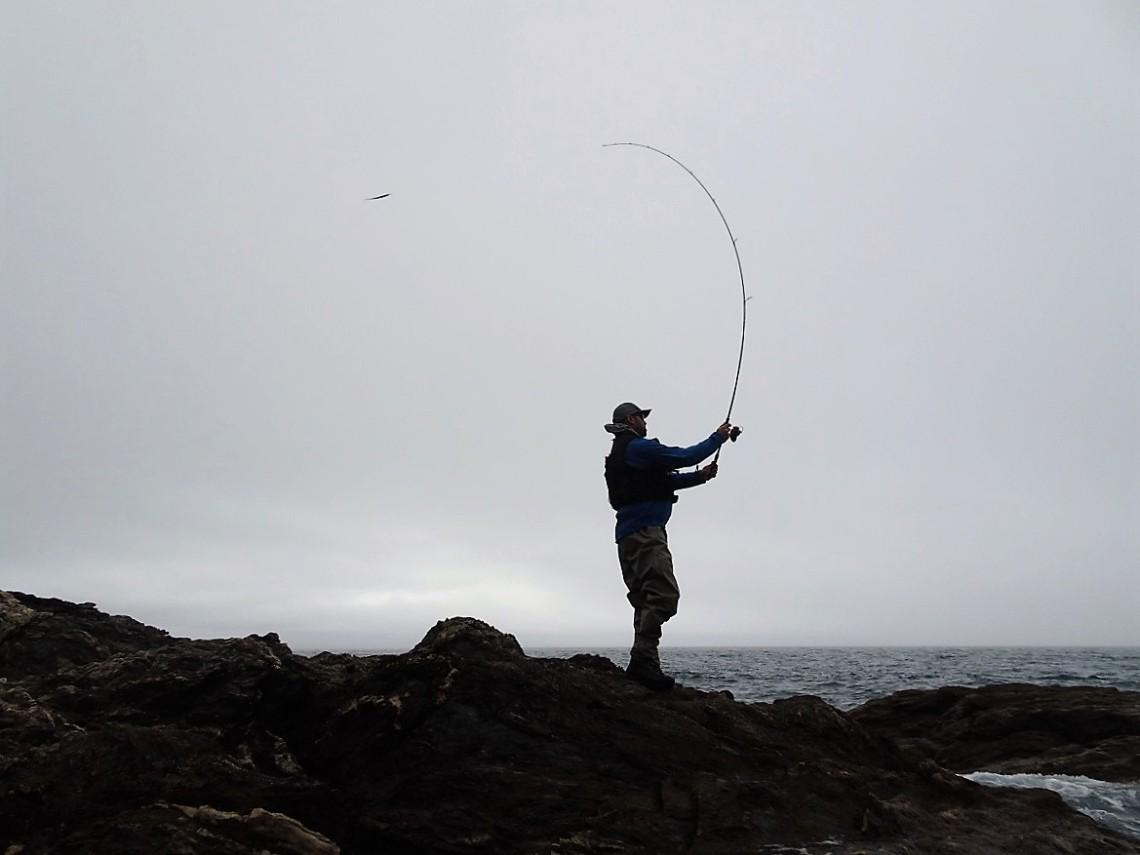 Apia lure fishing rods