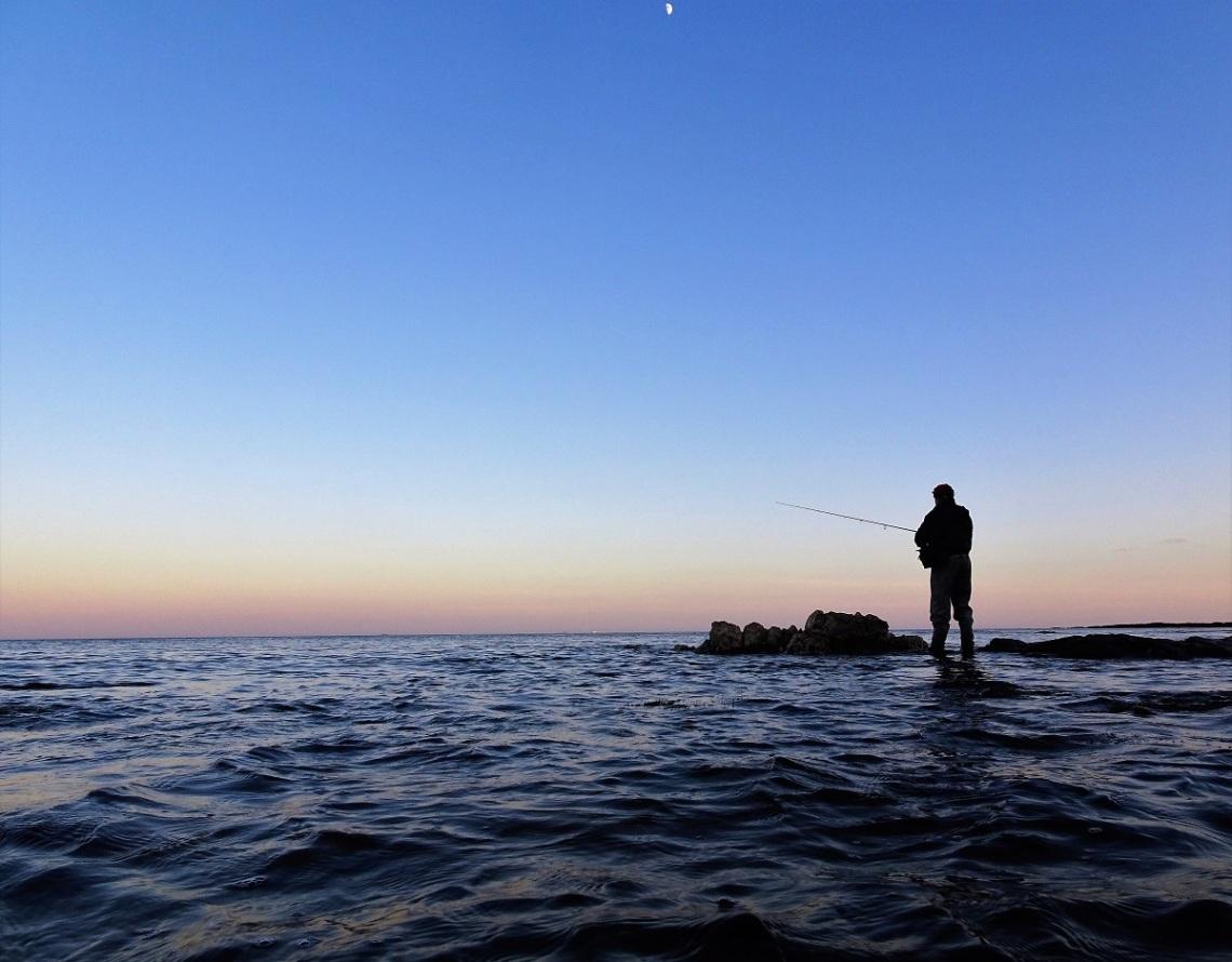 Devon bass fishing guide
