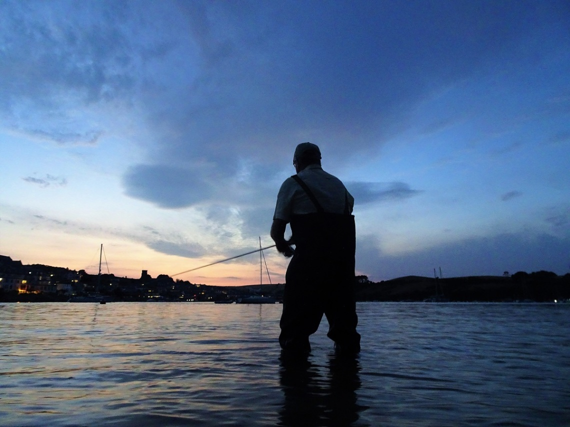 Bass fishing in estuaries