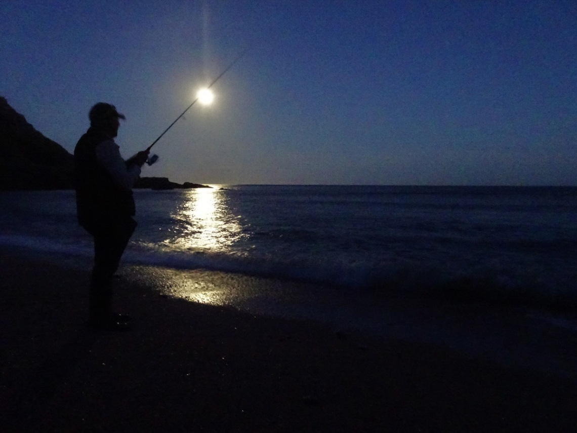 Bass on lures under a bright Moon