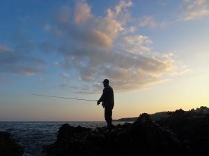 Devon coastline bass fishing