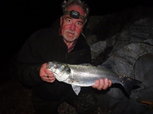 Bass at night in coloured water