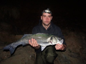 Big Devon bass at night