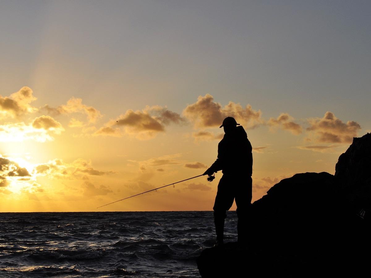 LFFB Blog Posts – Tidal Range (Parts 1 + 2 + 3) – South Devon Bass Guide