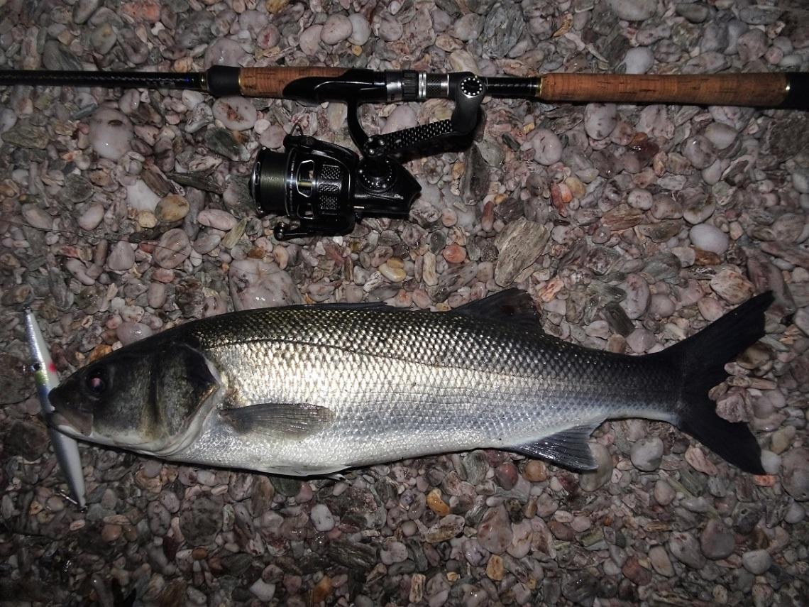 abu garcia fishung reels
