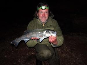 Bass on senkos at night