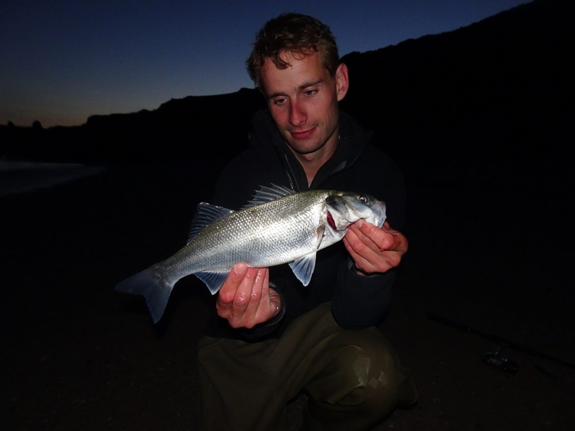 Bass at dusk on lures