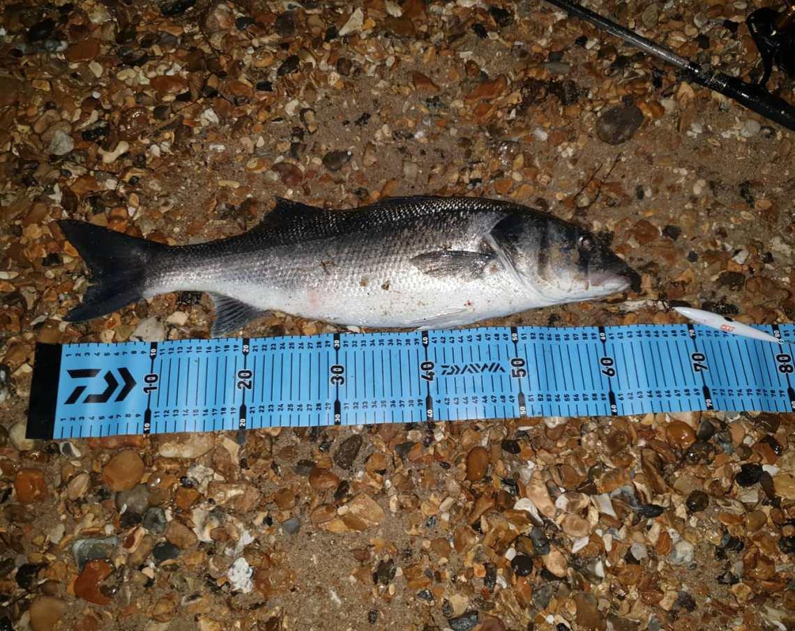John Ratcliffe 64cm bass