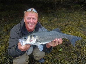 Big estuary bass on lures
